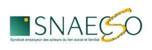 SNAECSO_logo